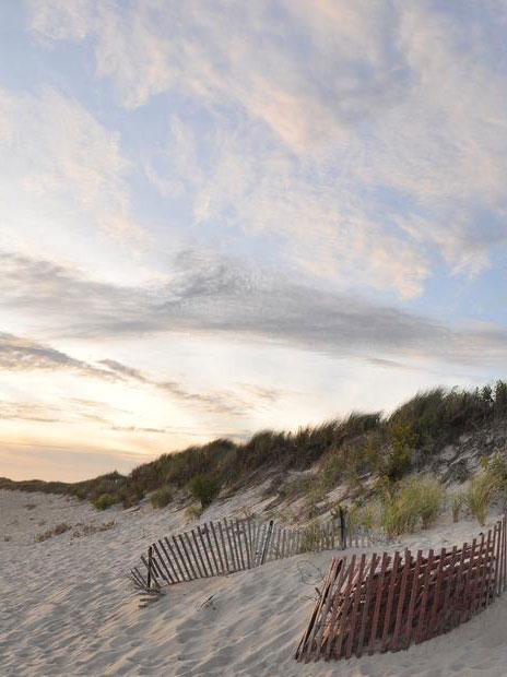 Image of Rhode Island Sand Dunes