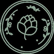 3 Nutmegs logo white