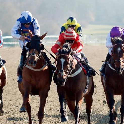 Jockey wearing red and white riding 'Exceeding Power' races against other horses