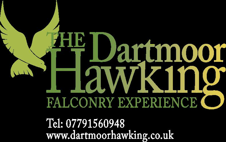 Link image of The Dartmoor Hawking falconry experience logo