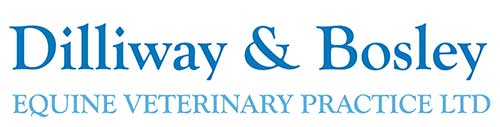 Link image of Dilliway and Bosley equine veterinary logo