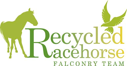 Link image of Recycled racehorse falconry logo