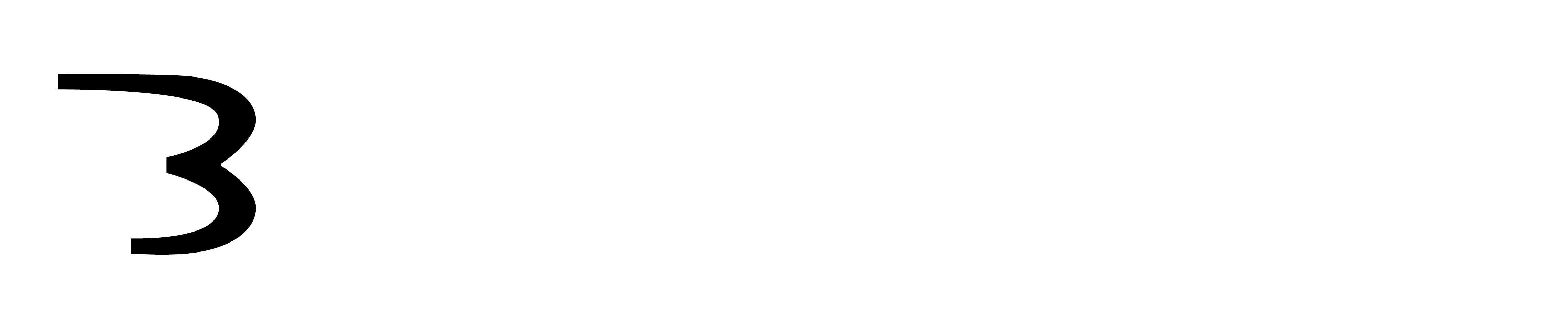 Weißes Bringwing Logo
