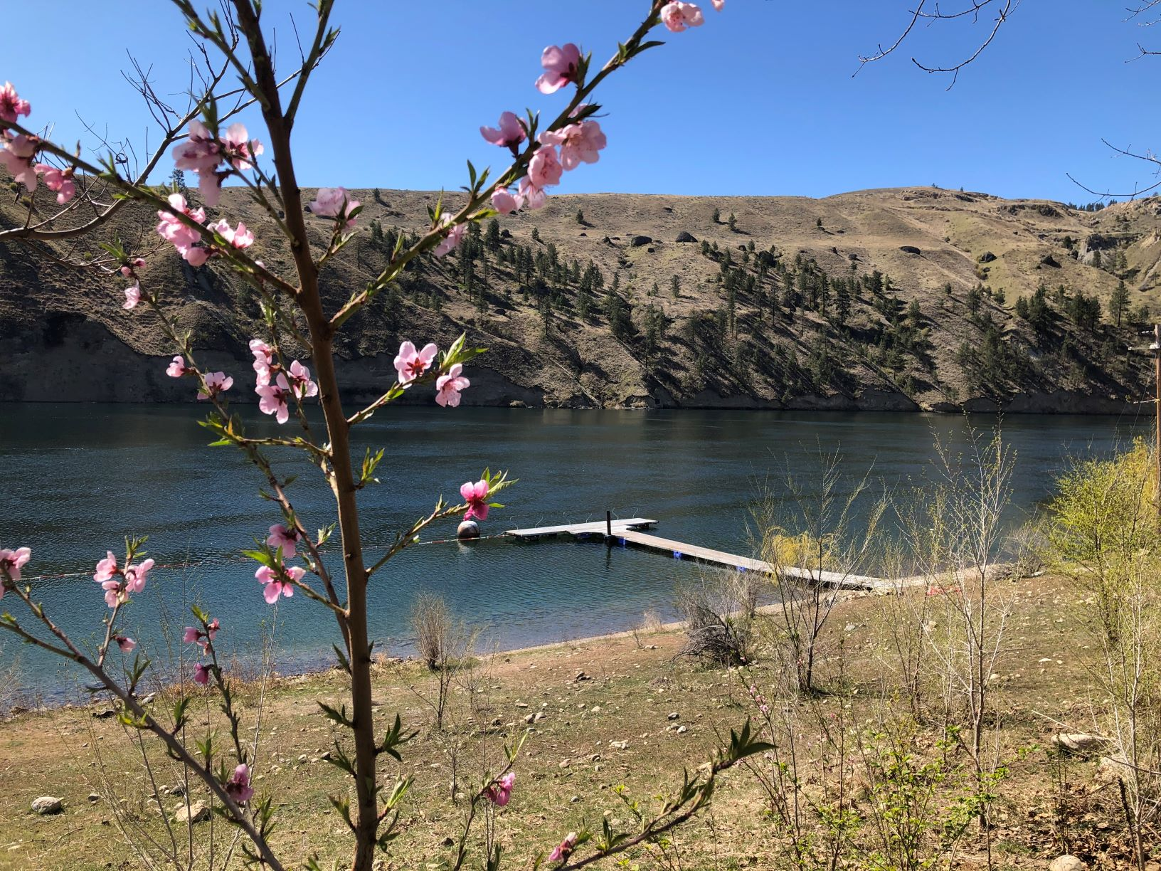 View of the Columbia River from Peniel Ranch