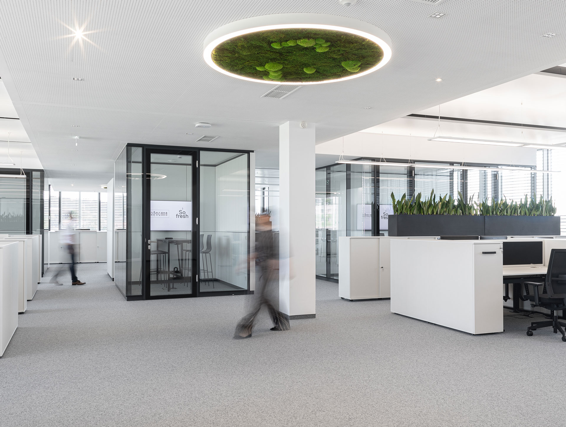 Ringana, interior design, design, innenarchitektur, büro design, designed von studio thörnblom