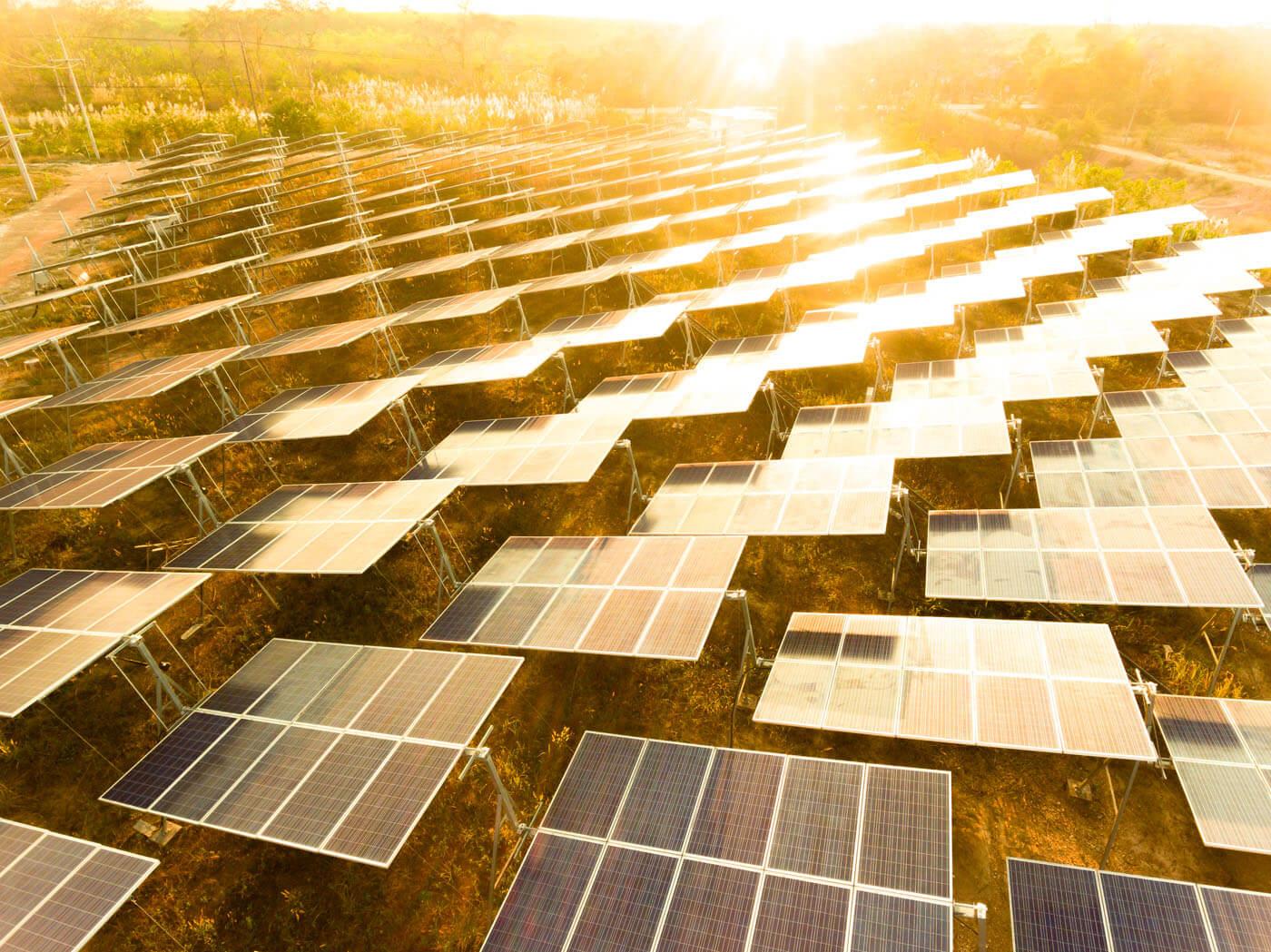 Solar panels in bright sunlight.