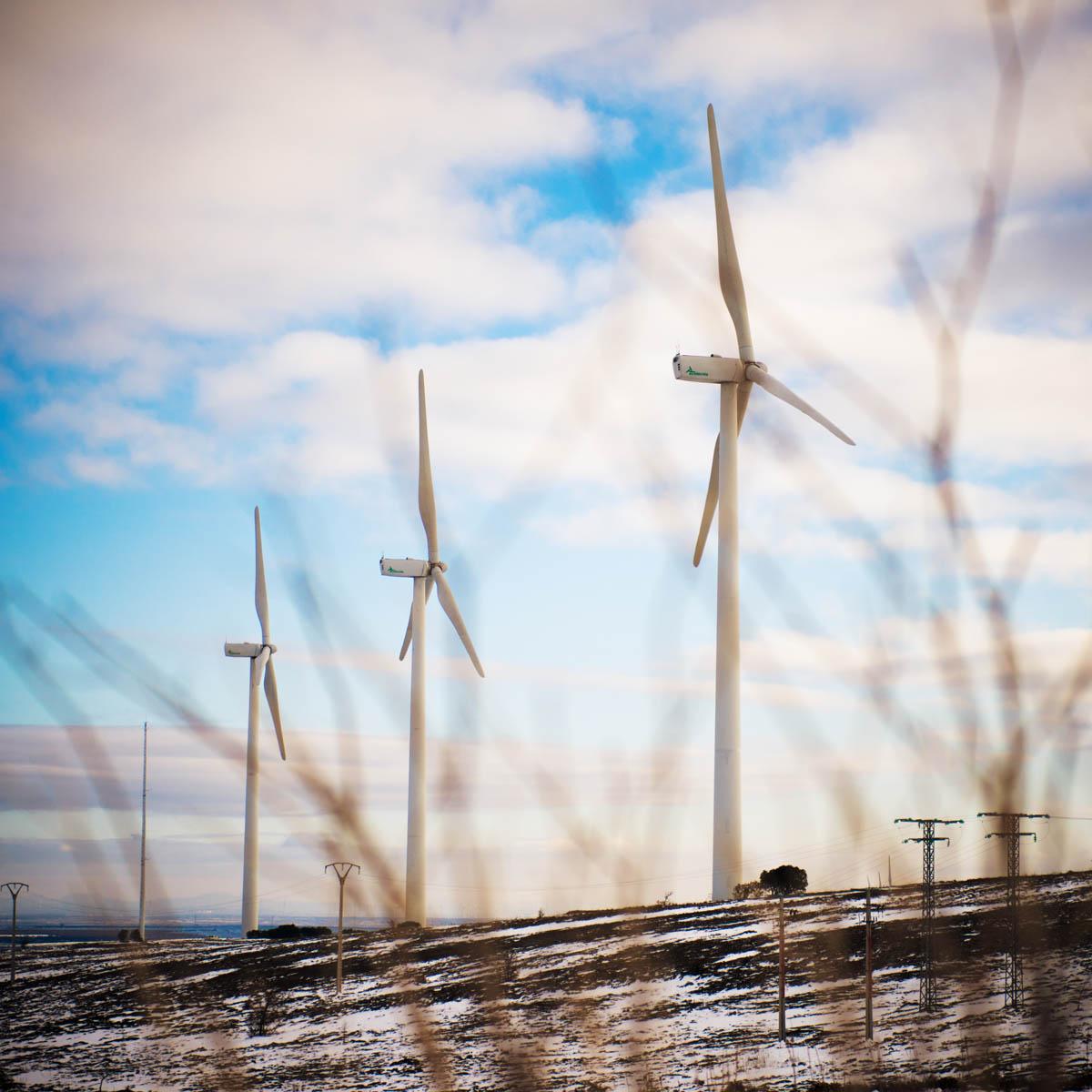 A wind turbine.