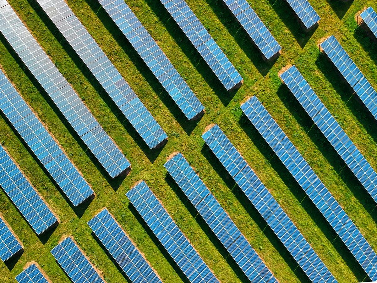 Solar panels on grass.