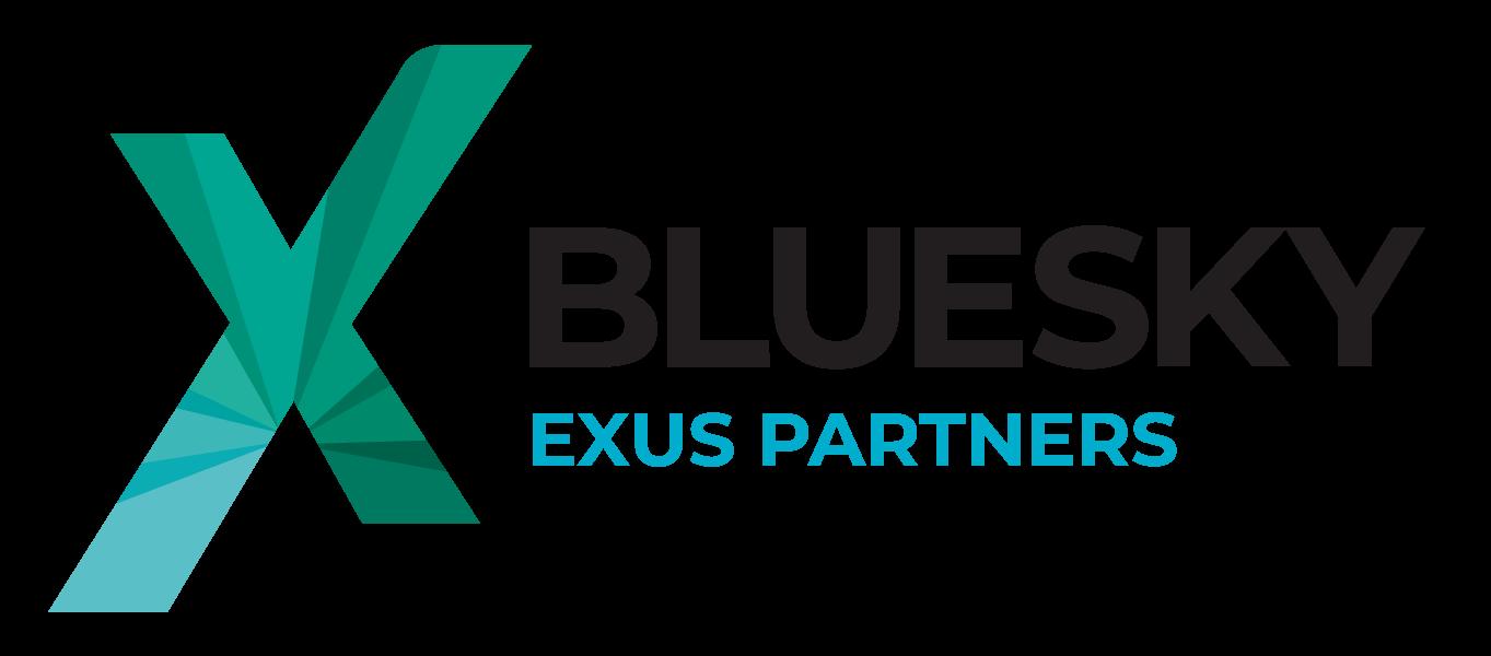 The Bluesky logo
