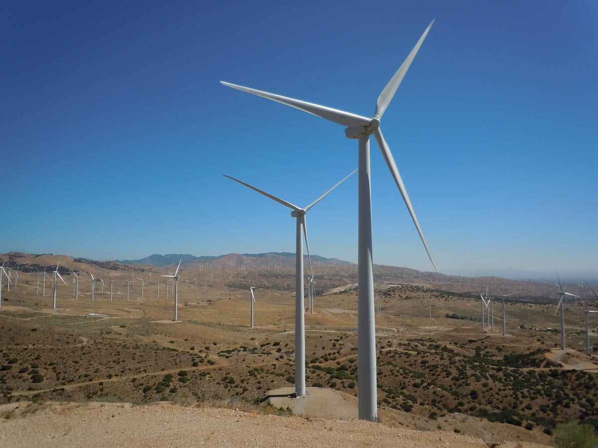 Exus to manage 221MW Portuguese wind portfolio