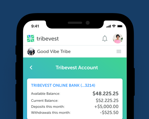 Mobile view of a Tribevest business bank account