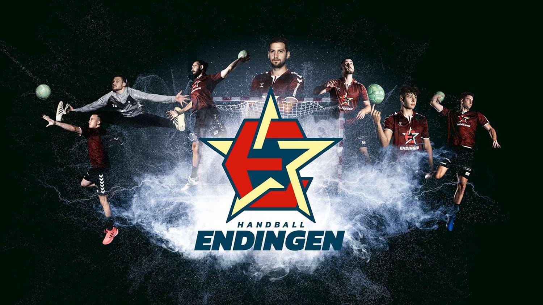 Sportpark Aare-Rhein TV Endingen Logo