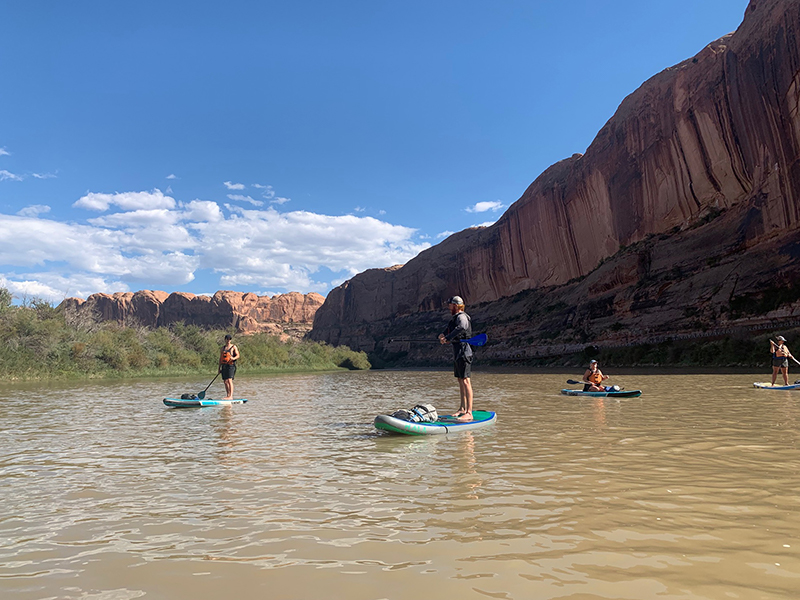 people standing on paddle boards on the river