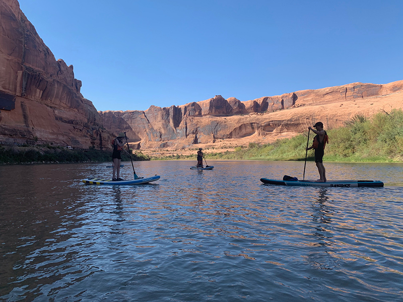 people standing on paddle boards on flat water