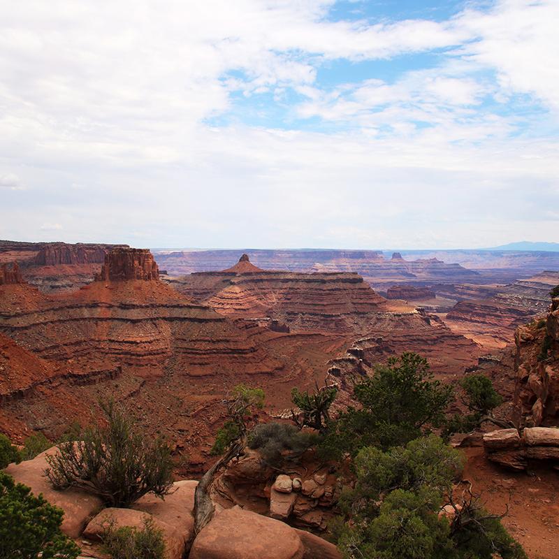 Overlook of Canyonlands National Park
