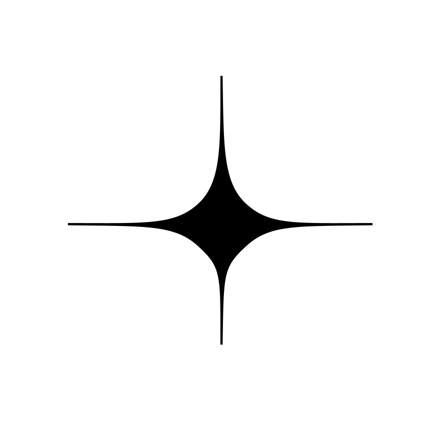 Sparkle shaped logo for selinache.com