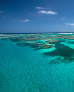 egadi Islands coastline