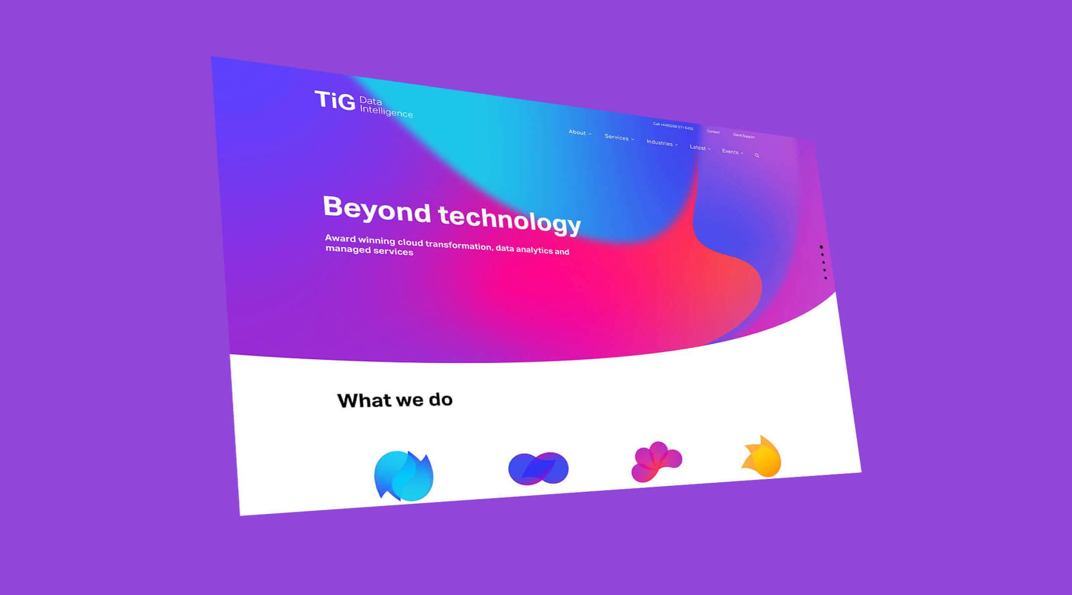 TiG website screenshot