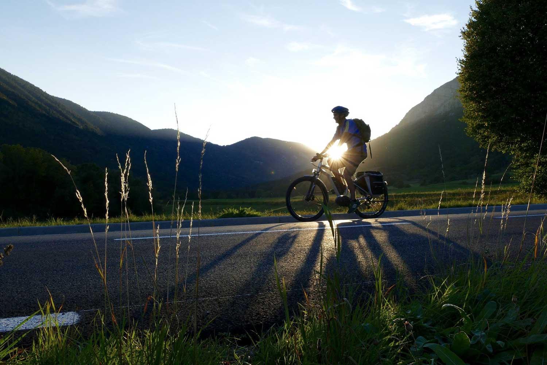 Bike Delivery Startup
