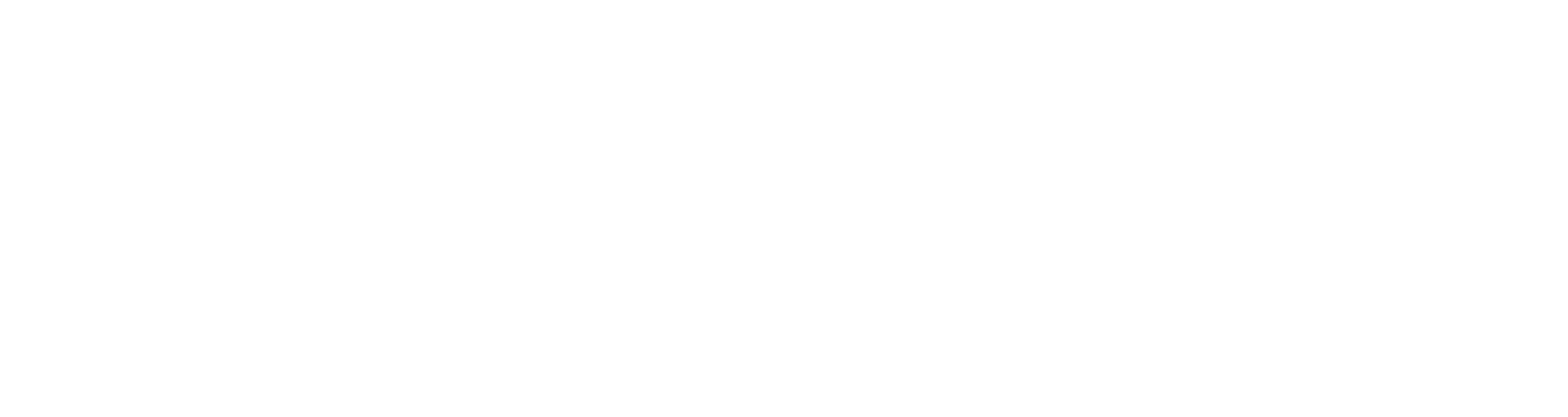 Black Photon Logo
