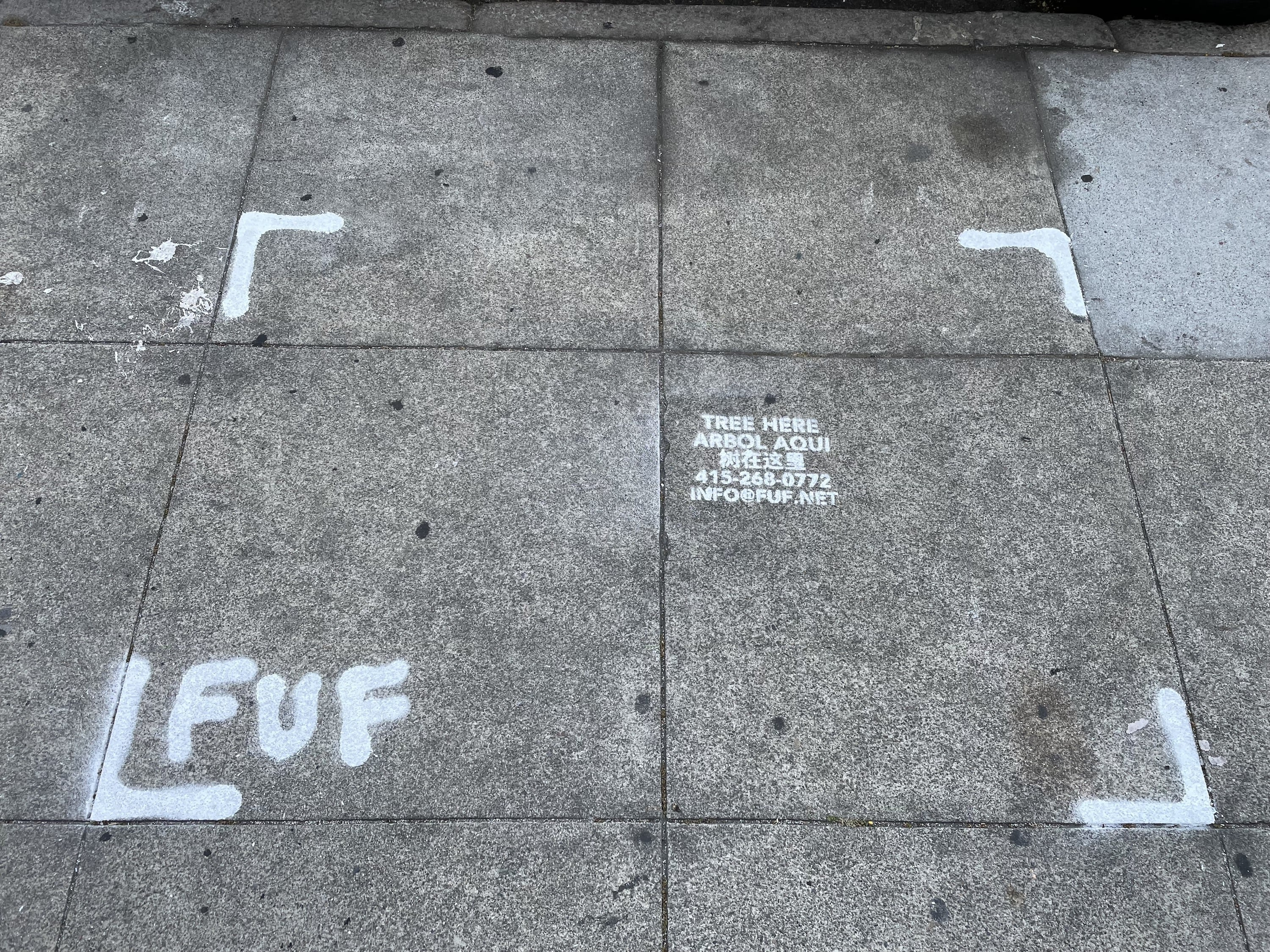 """Photo of a sidewalk with painted brackets around """"Tree here"""" stencil"""