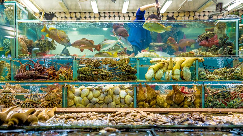 Seafood Restaurant Hong Kong