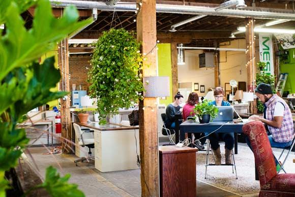 Green office coworking space