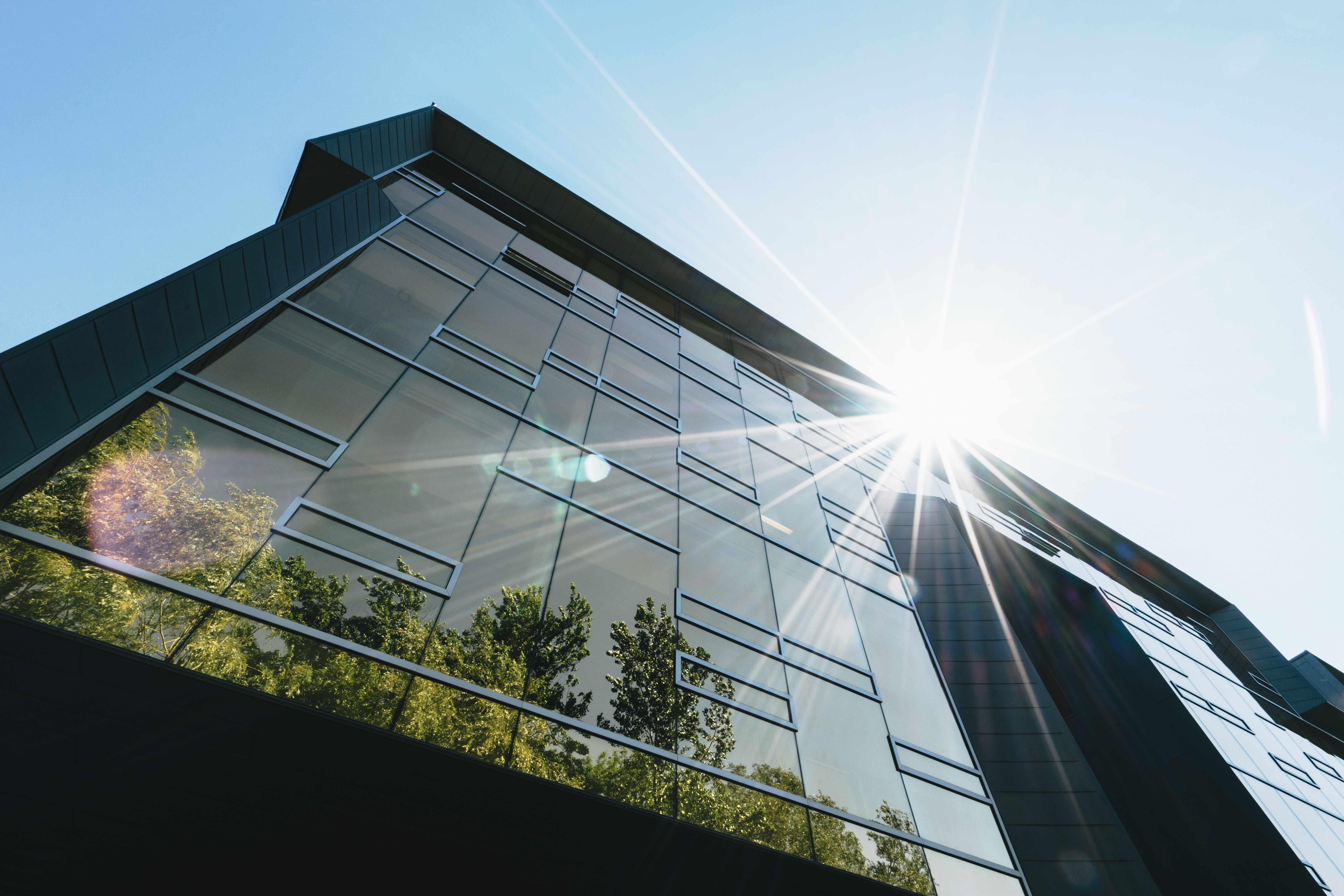 Going green: 10 easy steps to make your workspace more environmentally friendly
