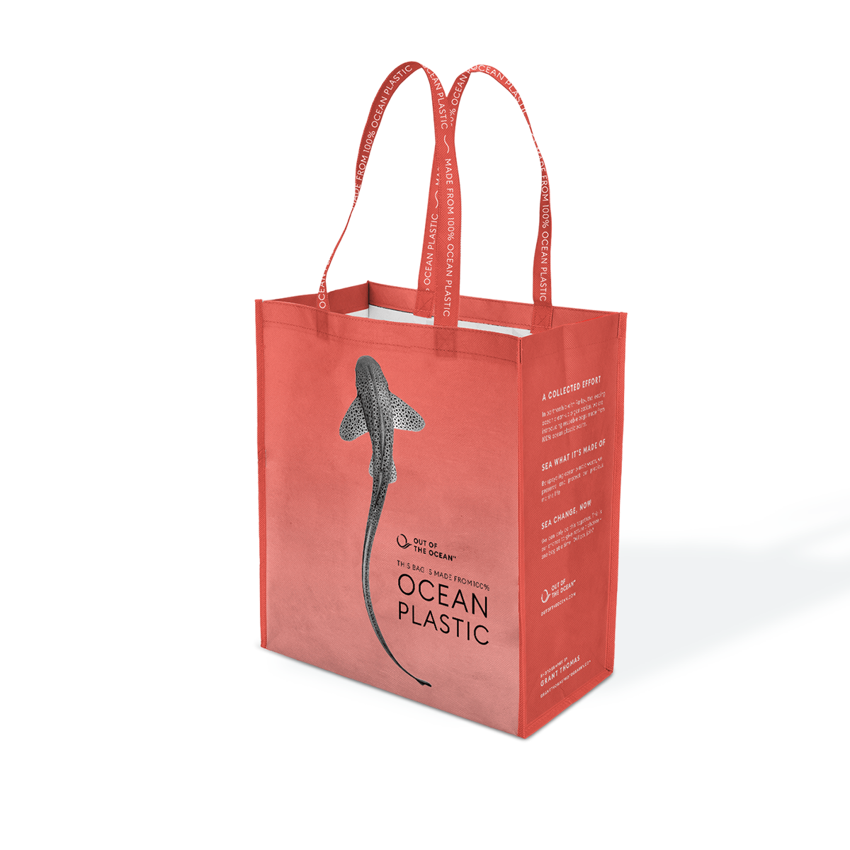 an image of a bag