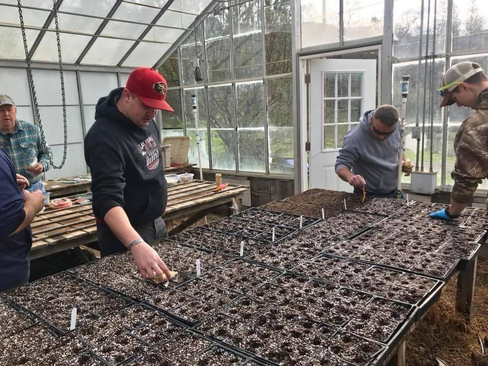 Veterans in the green house