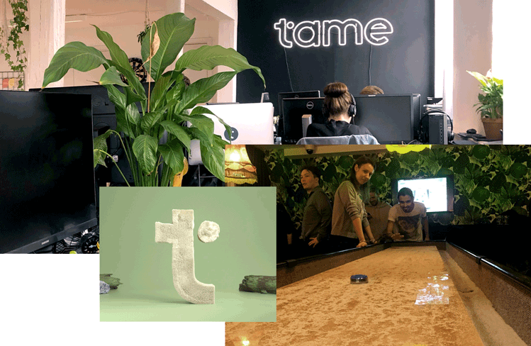 Collage of Tame office pictures.