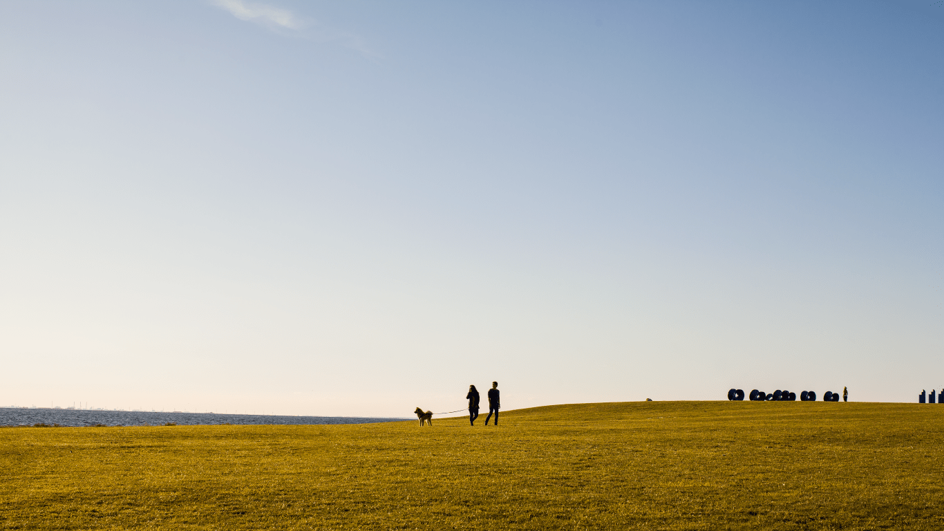 Mountail Range Norse