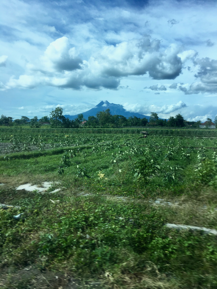 On our way to the Prambanan district with some of the largest temples of Indonesia and Gunung Merapi  in the distance.