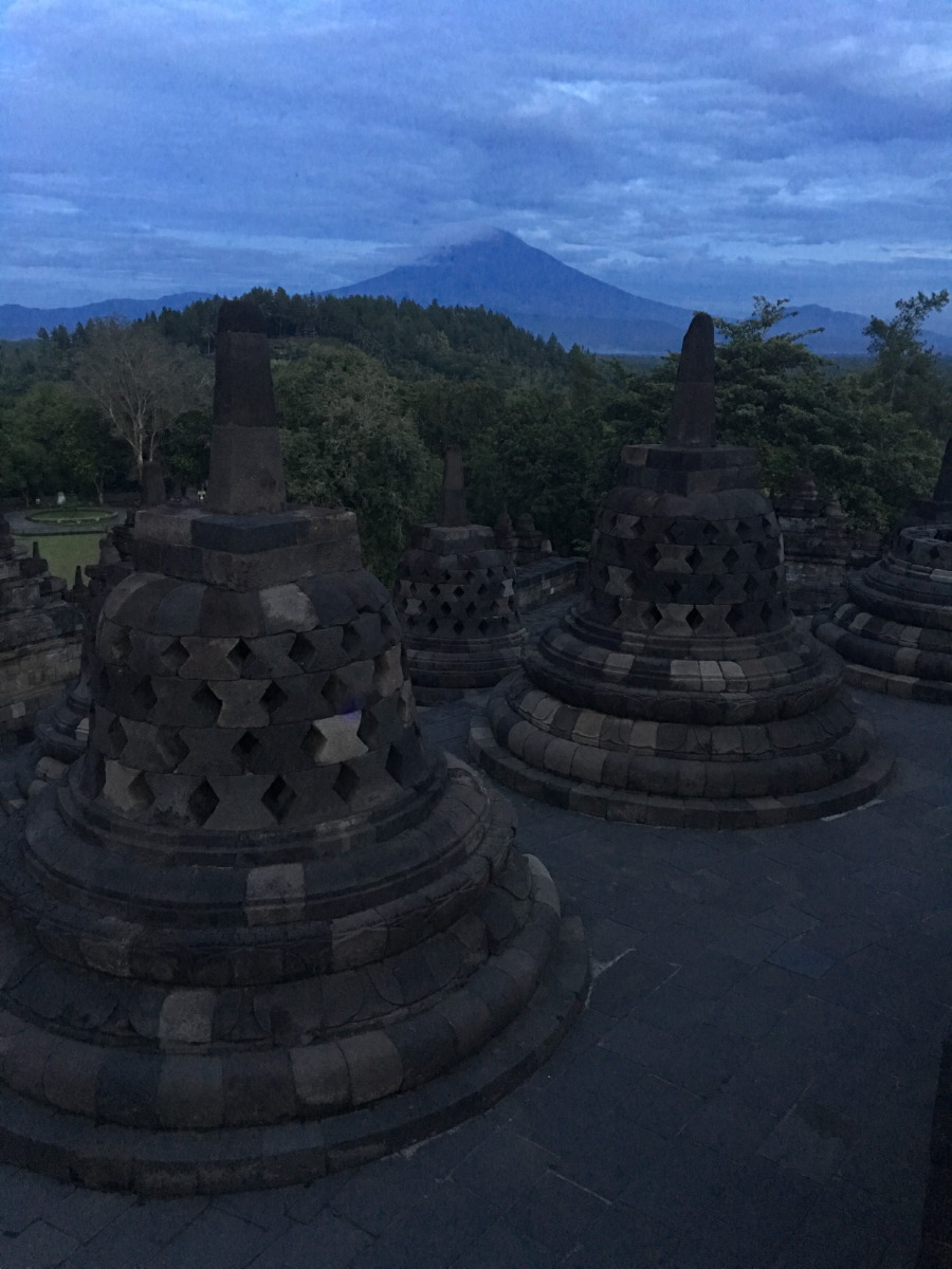 We woke up very early in the morning to go and see the sunrise over the temple complex.