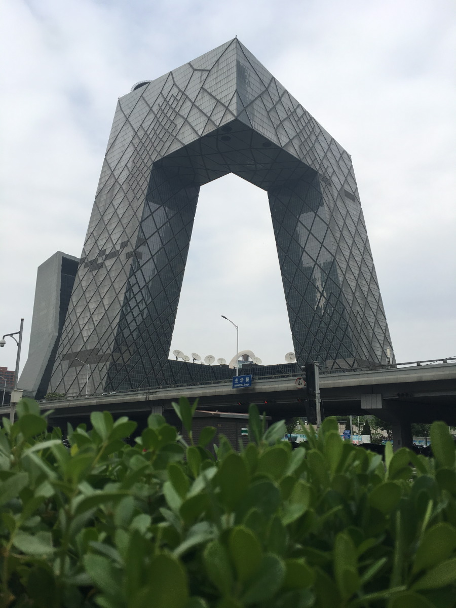 The line patterns on the vast surface of the CCTV tower reflect the forces of gravity on the inner structure of the building; the more lines, the bigger the force.