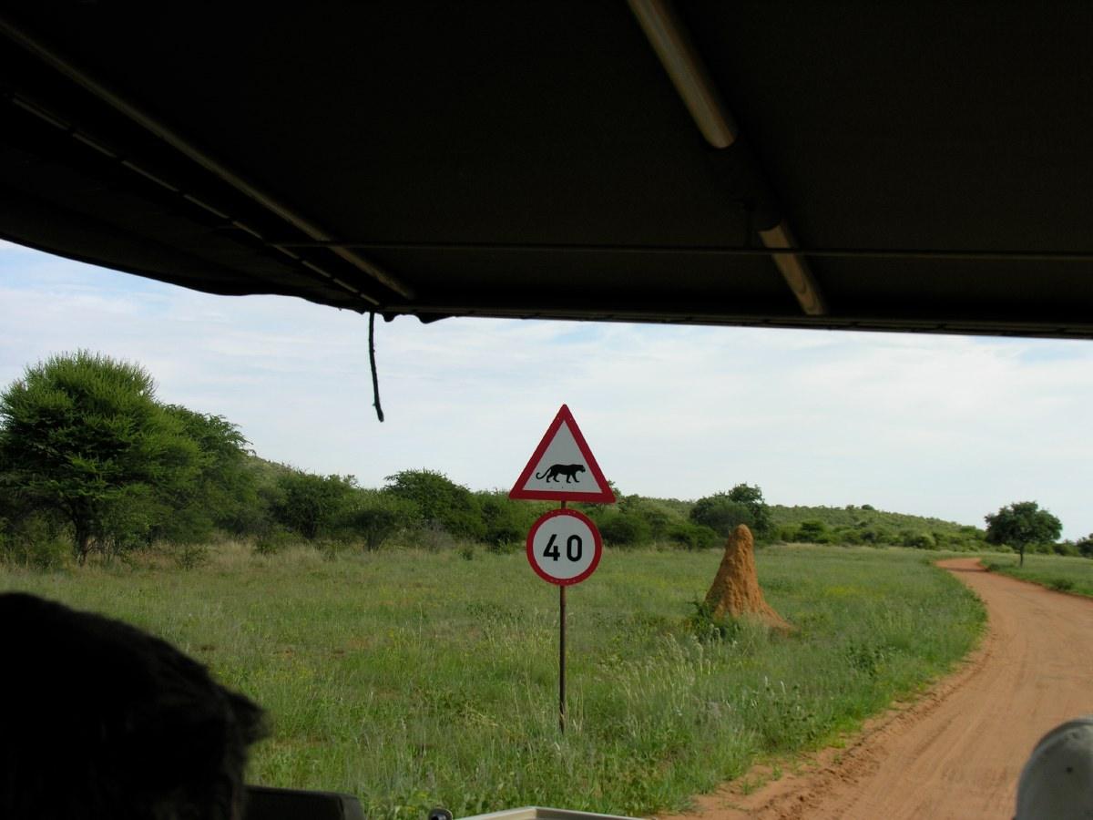 Unique road sign and termite mound
