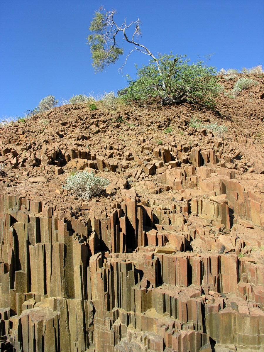 These basalt 'organ' pipes are the remnants of a volcanic eruption