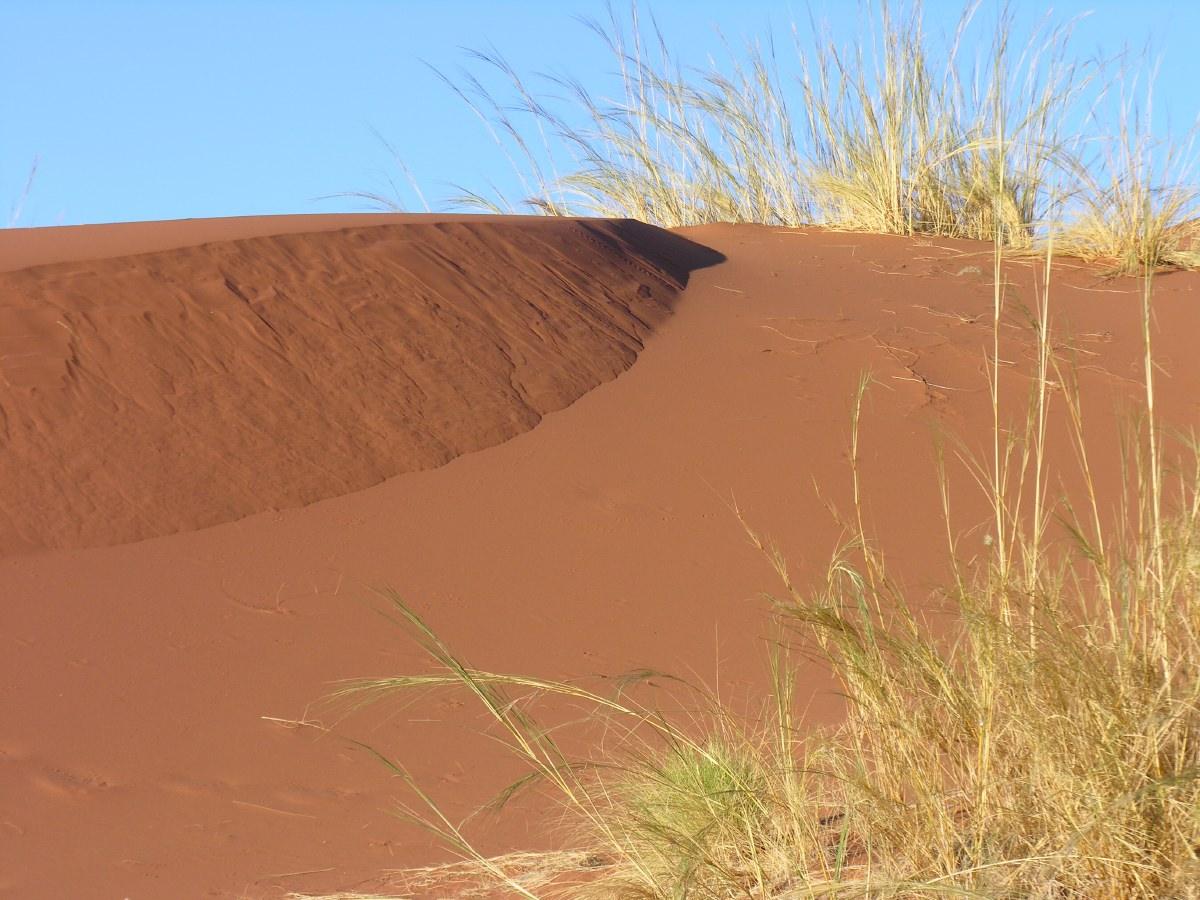Colourful Sossusvlei sand dunes