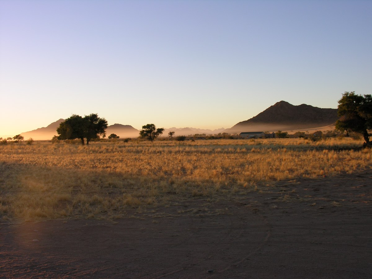An early rise today to see the sunrise in the Sossusvlei, famous for its orange sand dunes.