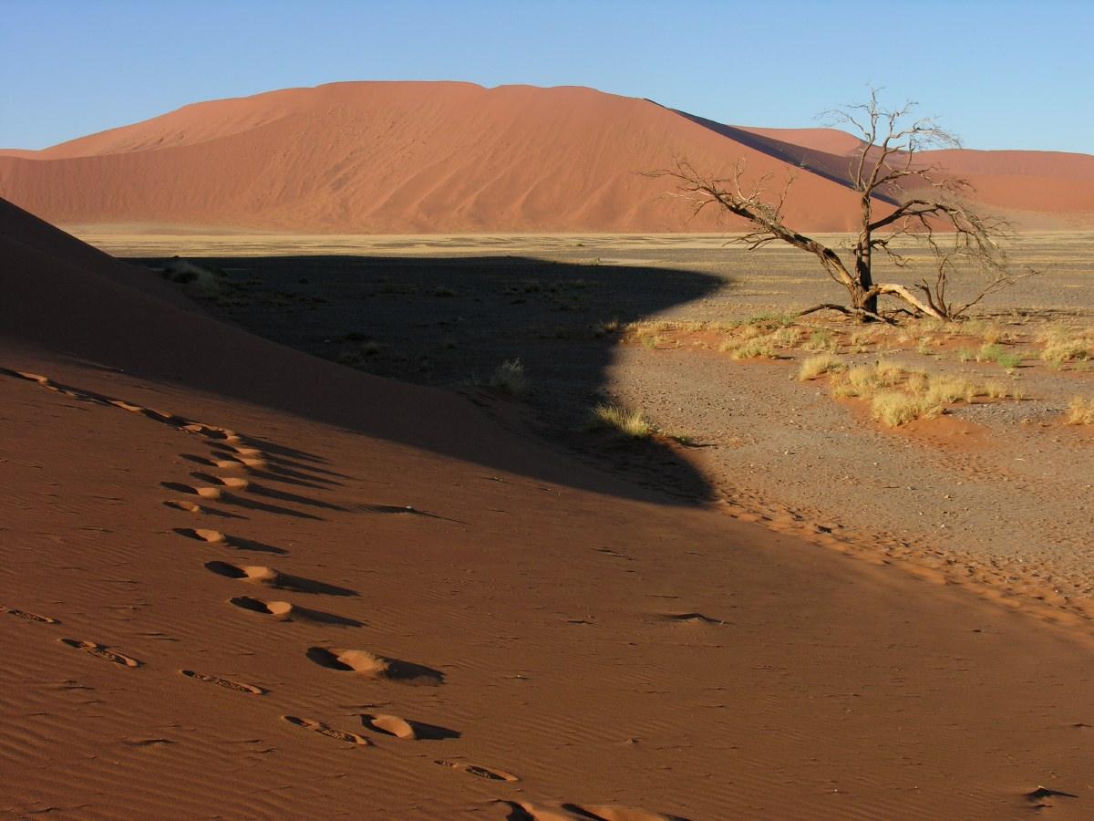 Dry pan behind dune 45