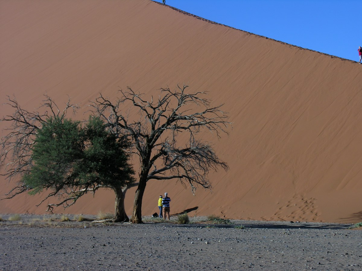 Dune 45 is one of the most popular sand dunes for dune climbing, probably because its very close to the road