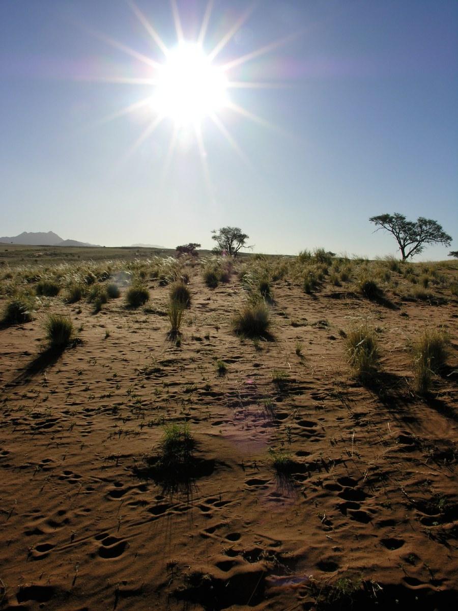 Namib Rand sunset