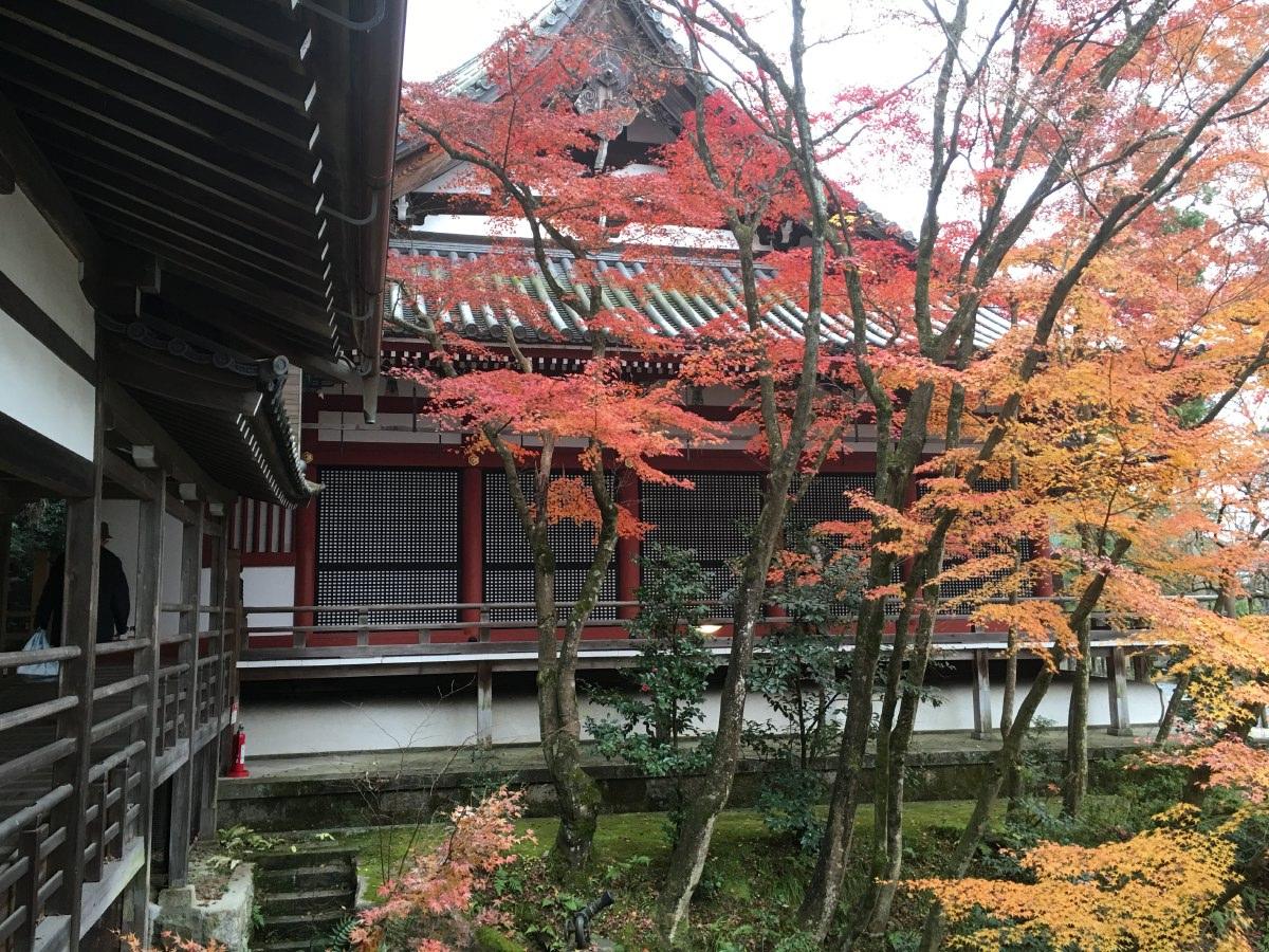 Wandering around the kiyomizu-dera temple complex