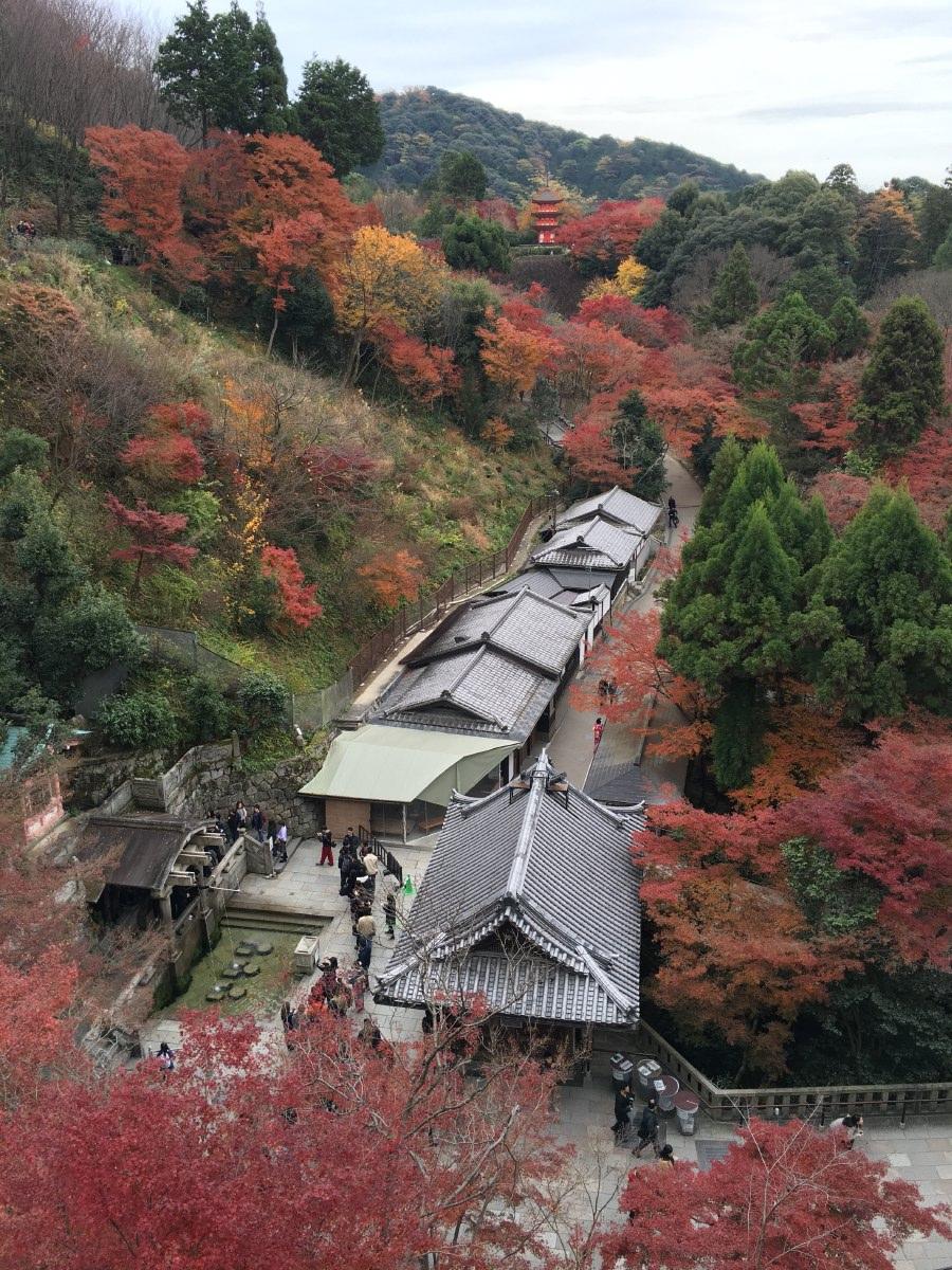 The Otowa Waterfall at the bottom, located at the base of Kiyomizu-dera's main hall and the Koyasu Pagoda in the distance