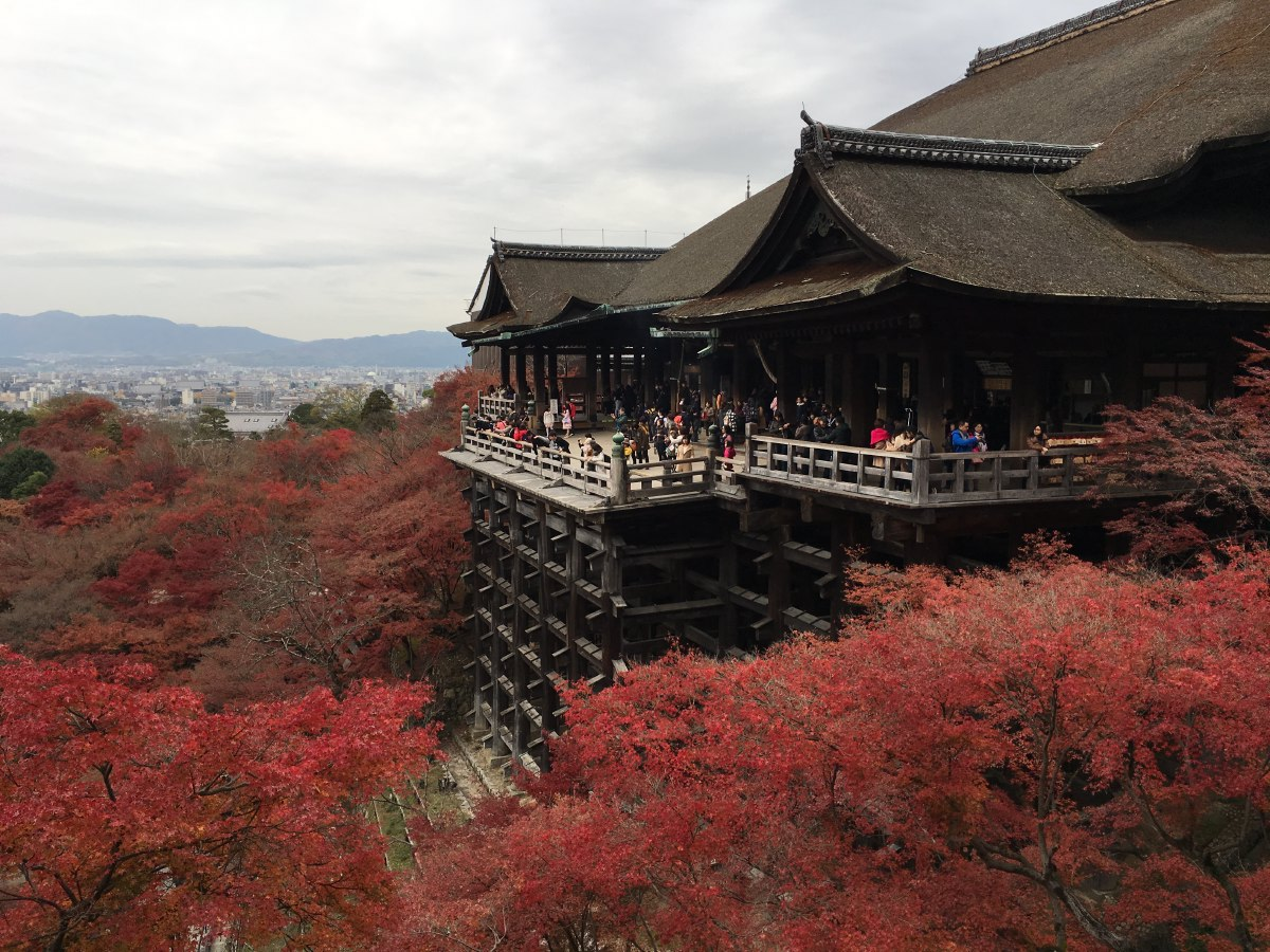 Kiyomizu-dera is best known for its wooden stage that juts out from its main hall, 13 meters above the hillside below. The main hall and the stage were built without the use of a single nail.