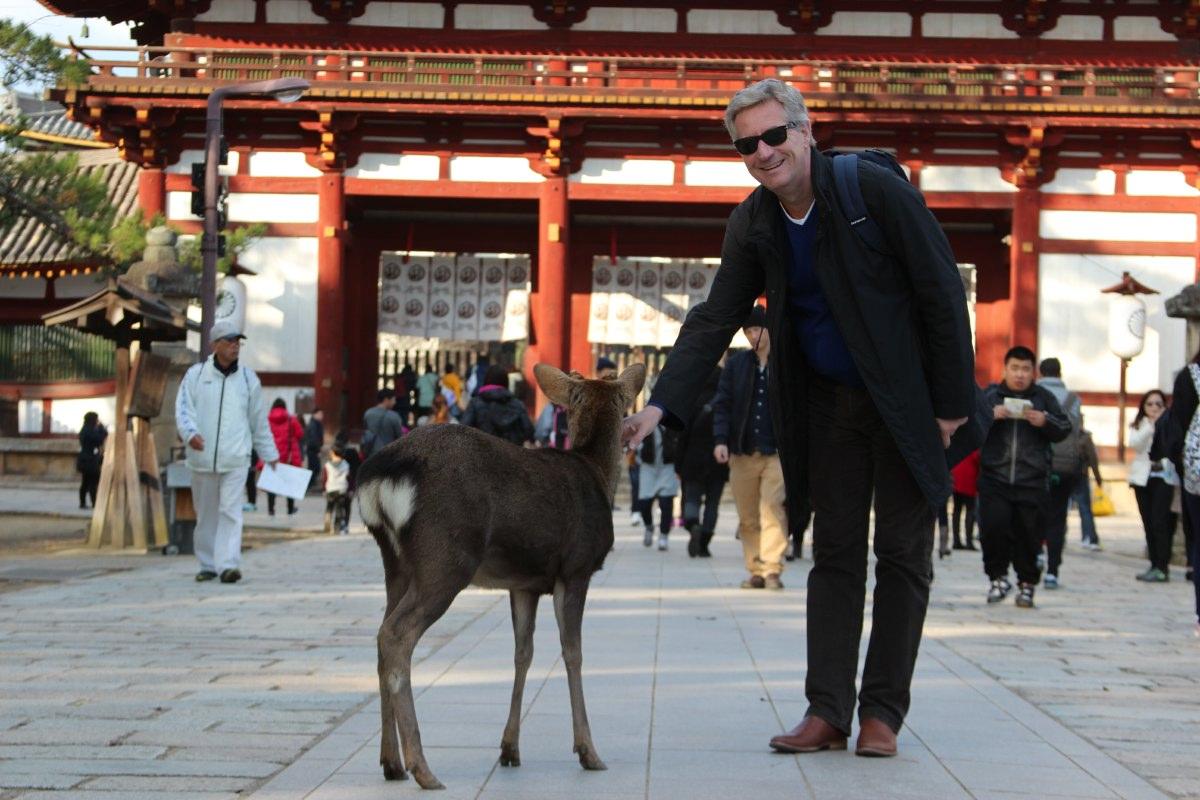 Nara park, on our way to Toda-ji. Deer trodding around everywhere.