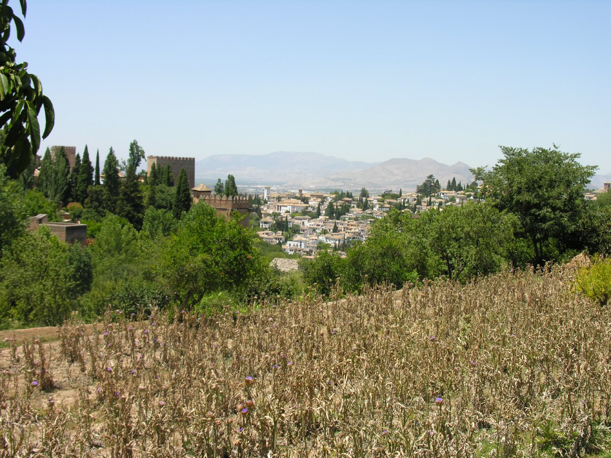 The Alhambra used to be the palace of the moorish kings of Granada. Now it is one of the major touristic venues in Spain.