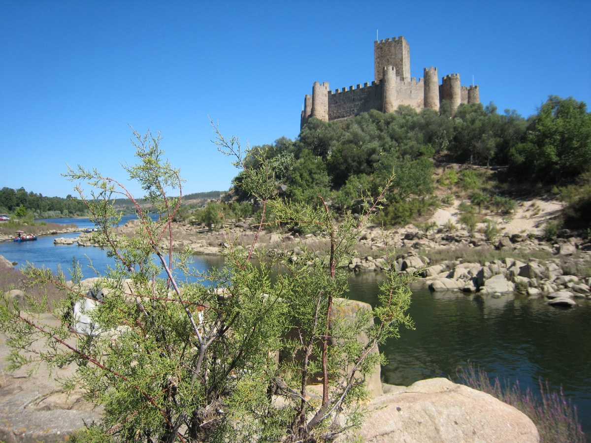 And last but not least, the beautifully situated Castelo Do Bode, in the middle of a hill in the river behind the dam.