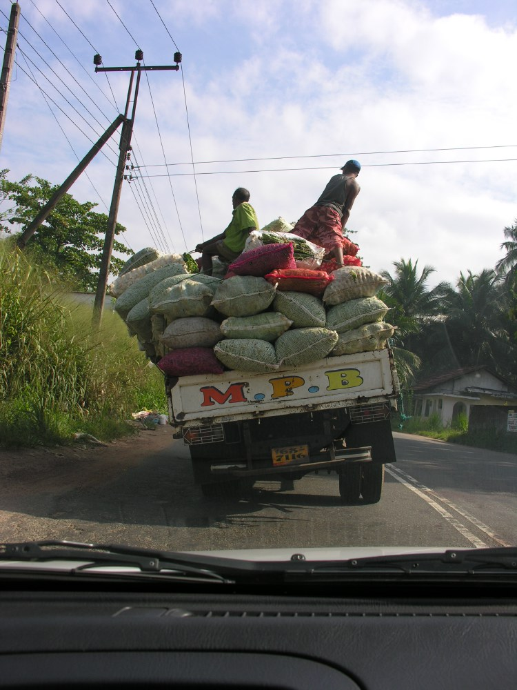 Day 2 - On our way to Sigiriya, a lorry in front of us can't hold its load anymore...