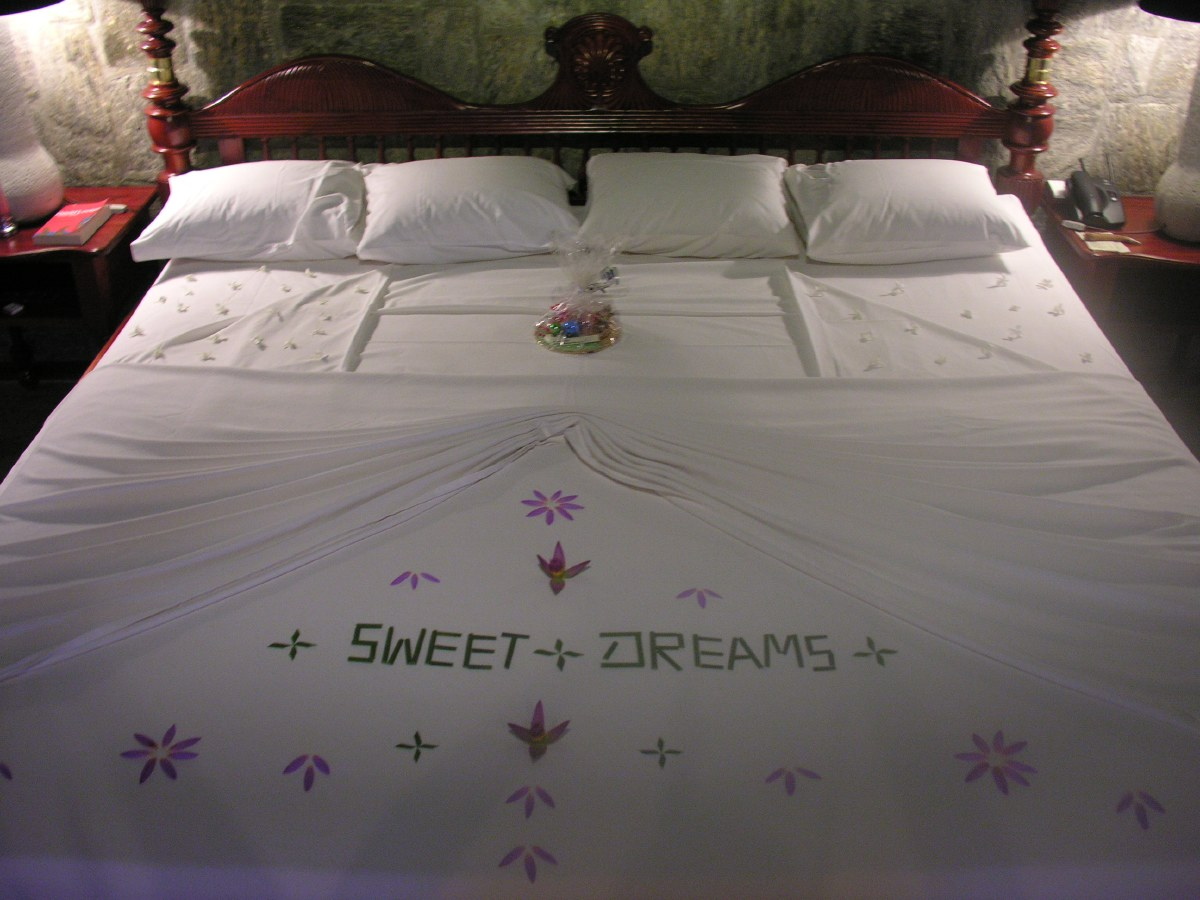 We stay two nights in the elegant Elephant Corridor Hotel. The hotel staff prepare the bed like this for the night